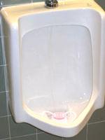 Urinal1a